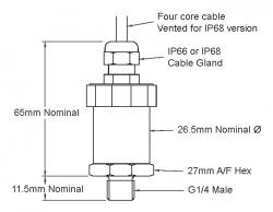 20 bar g range 4 to 20 mA output ceramic diaphragm pressure sensor